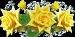 keltainenruusu